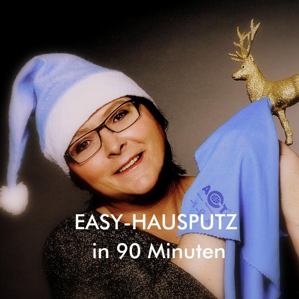 Easy-Hausputz